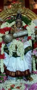 Kāmākṣī dekorert som Sarasvatī, gudinnen for visdom. Dette er en publikumsfavoritt.