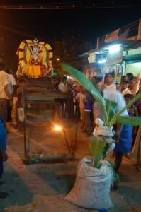 Banantreet plassert foran gudinnens festivalstatue