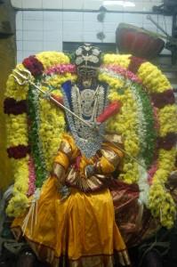 vijayadashami nikon 052